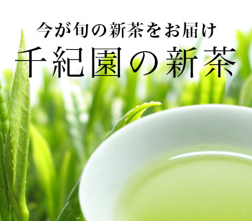 千紀園の新茶